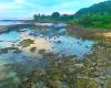 大自然残るオアフ島ノースショア、ノスタルジックな雰囲気をご堪能あれ