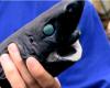 その名もニンジャカラスザメ。新種サメのかっこいい名前とルックスに世界で話題!