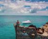 これぞバハマの楽しみ方!ビミニ島の難破船から眺める絶景